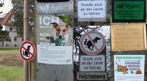 Anleinpflicht für Hunde: 1. April bis 15. Juli!