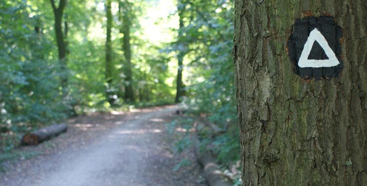 Kansteinweg