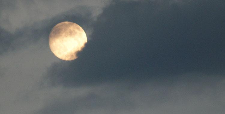 02.11.: Mondscheinbasar