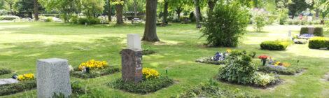 Petiton für einen Erhalt der Erdbestattungen in Badenstedt gestartet!